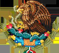 Orel sedící na kaktusu